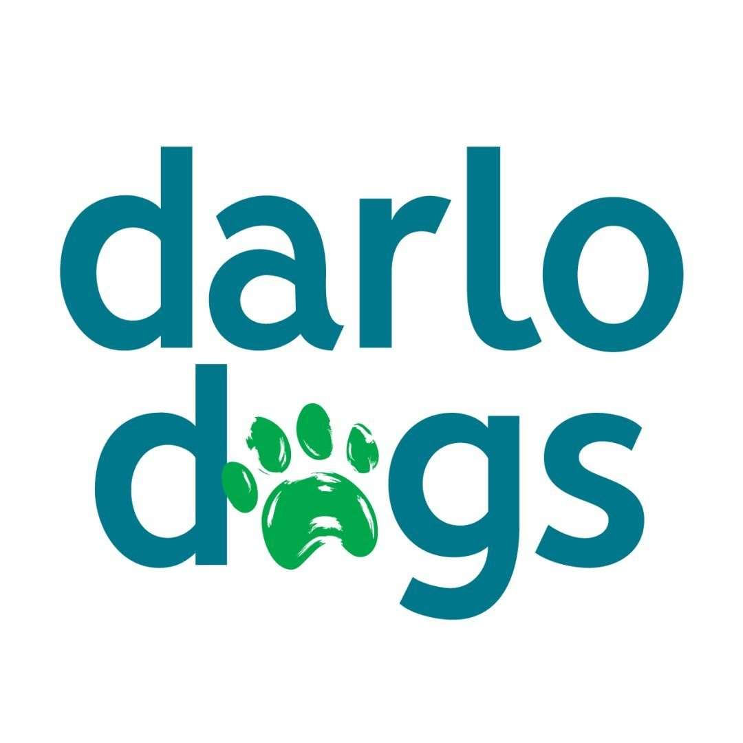Small Dog Daycare and Grooming